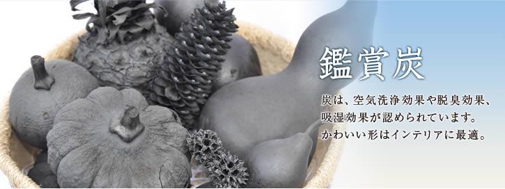 炭・鑑賞炭 炭は、空気洗浄効果や脱臭効果、 吸湿効果が認められています。かわいい形はインテリアに最適。